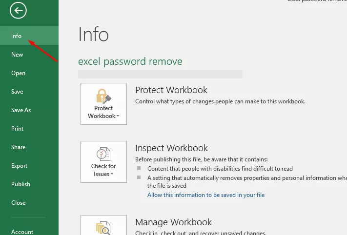 How to Remove the Password for Opening an Excel File. Step 2